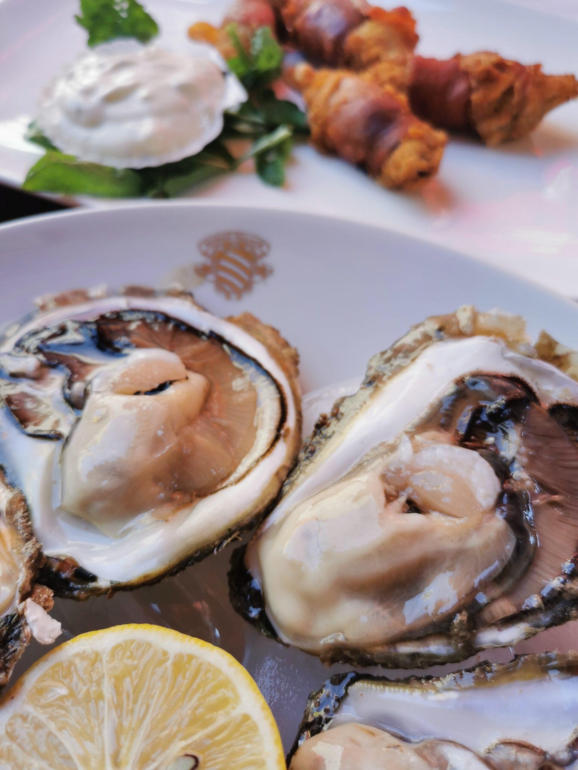 mali ston oyster